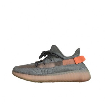 Adidas Yeezy Boost 350V2 true from